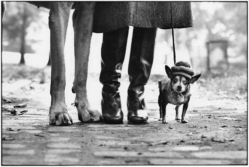 john szarkowski the photographers eye essay